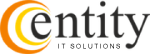Entity Solutions Logo